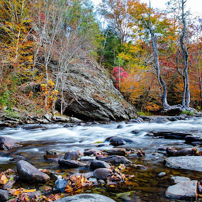 Tennessee Fall by Sandra Clukey - Landscapes Mountains & Hills ( mountains, clukey, fall, streams, sandra )