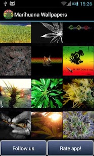 Weed Wallpapers Marihuana