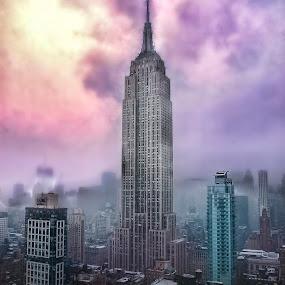 Empire- The Manhattan Chronicles II by Laura Prieto - City,  Street & Park  Skylines ( skyscrapper, new york skyline, dawn in new york, empire state building, manhattan, new york, Urban, City, Lifestyle,  )