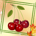 Fruits Memory Games icon