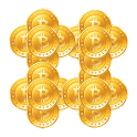 Bitvisitor Bitcoin Helper icon