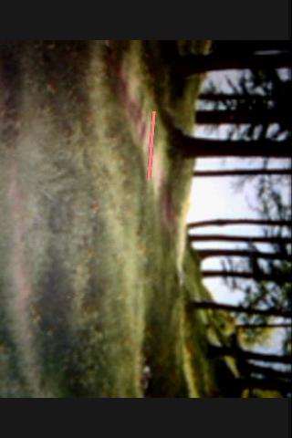 ObservationCamera