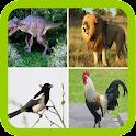 Sonidos divertidos animales icon