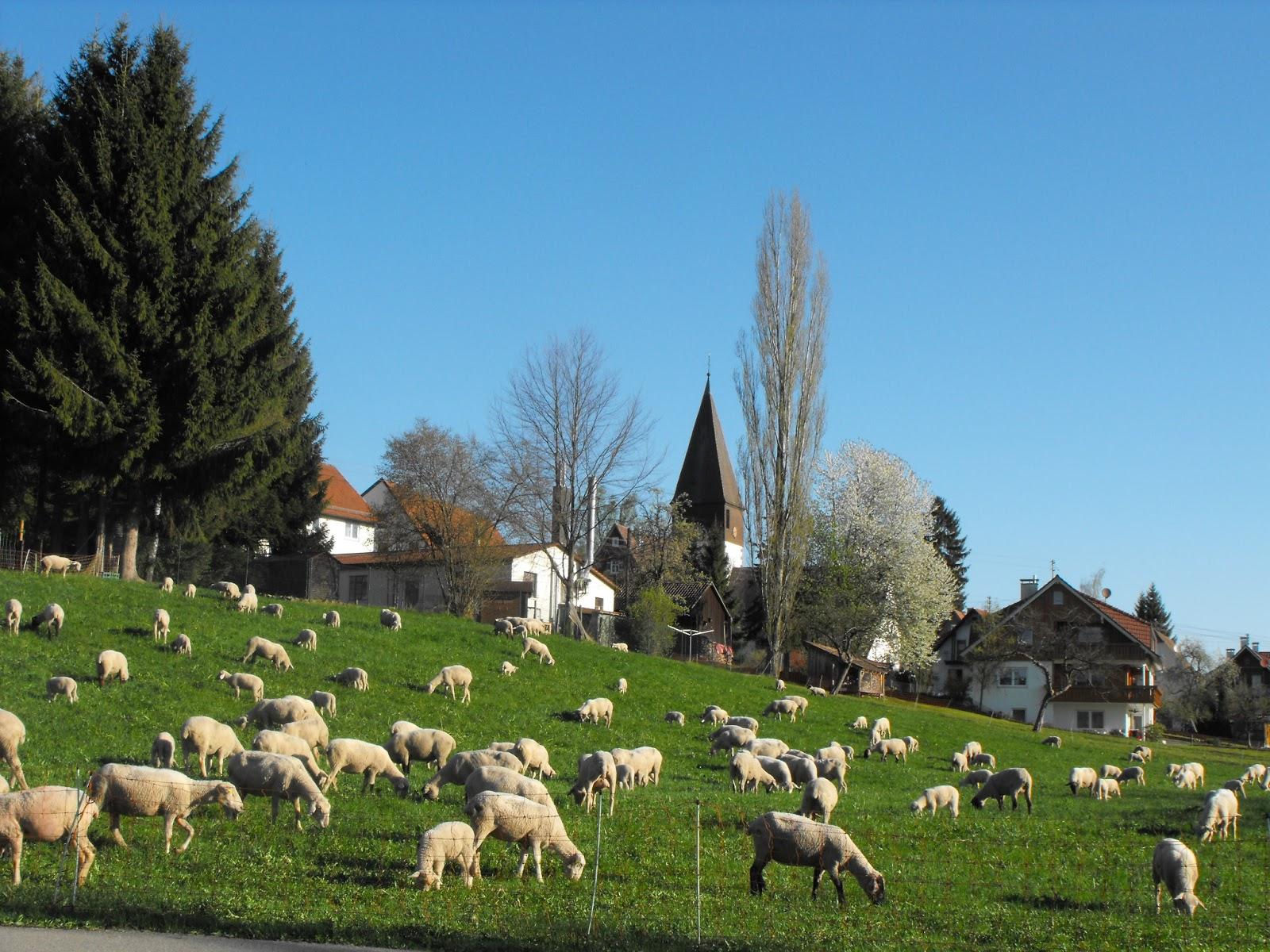 Neuweiler im Schwarzwald