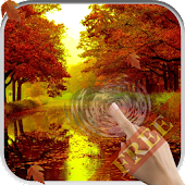 Magic Touch: Autumn Leaves