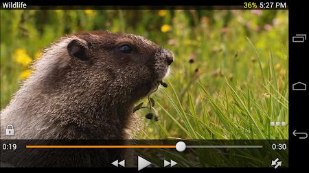 Video Player 1.7.8 screenshot 66833