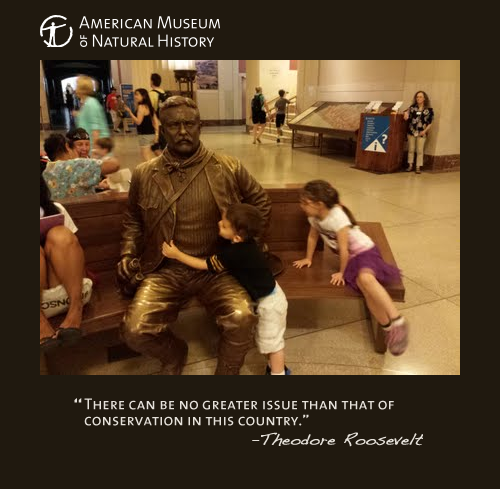 Teddy Roosevelt picture with quote. There can be no greater issue than that of conservation in this country. - Theodore Roosevelt