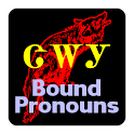 Cherokee Bound Pronouns