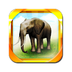 REAL ANIMALS HD (Full) v1.2.7