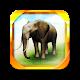 REAL ANIMALS HD (Full) v1.2.7