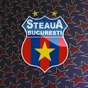 Official Fan Steaua FC icon