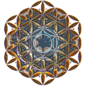 Flower of Life LWP (Donation) icon