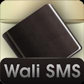 Wali SMS Theme: Dark Brown