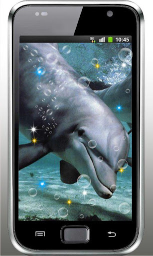 Dolphin Free HQ live wallpaper