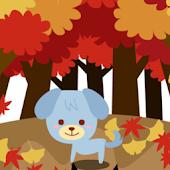 Take a walk in autumn