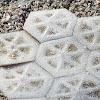 Honeycomb Cowfish (skin)