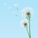 Dandelion Breeze LW icon