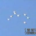 UFO News Pro