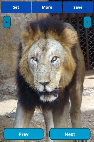 【免費娛樂App】Sad animals in Zoo-APP點子