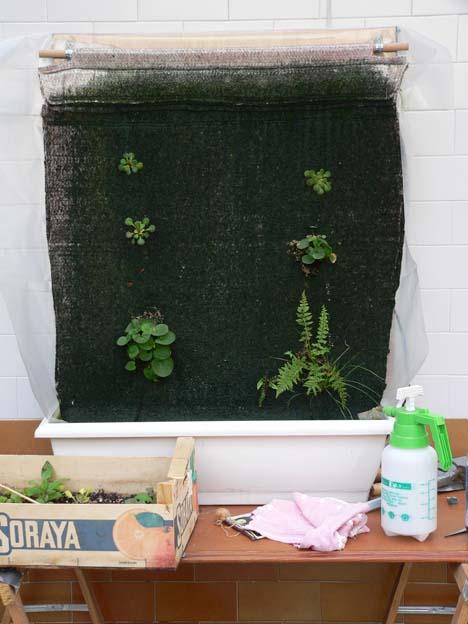 Como hacer un jard n vertical tipo patrick blank en tu casa urbanarbolismo - Como preparar un jardin en casa ...