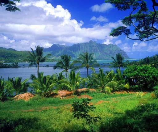 3D Hawaii HD