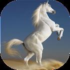 Лошади живые обои icon