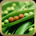 Eat Informed - Food Additives icon
