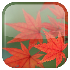 maple-leaf-live-wallpaper