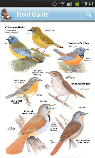 Screenshot for Roberts Multimedia Birds of SA in Hong Kong Play Store