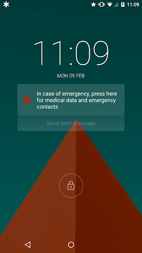 醫療 ID: 在緊急情況下