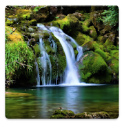 Download nature wallpapers apk to pc download android - Nature wallpaper apk ...