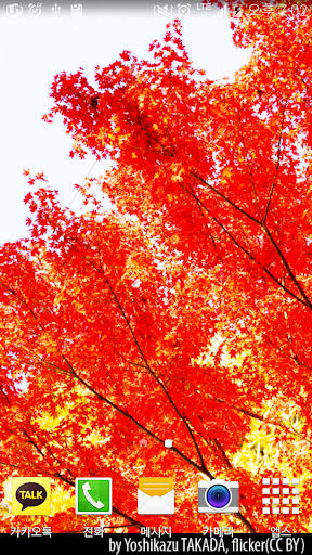 Autumn Red LiveWallpaper