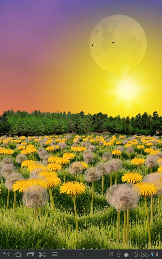 Dandelions FREE Live Wallpaper - screenshot