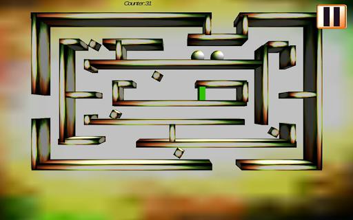 Mind Maze :The Mind Game