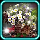 Wild Flowers HD live wallpaper icon