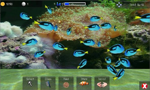 Aqualand 3d fish aquarium android apps on google play for Fish tank app