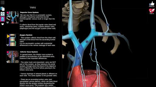 Anatomy Learning - 3D Atlas 2.1 screenshots 20