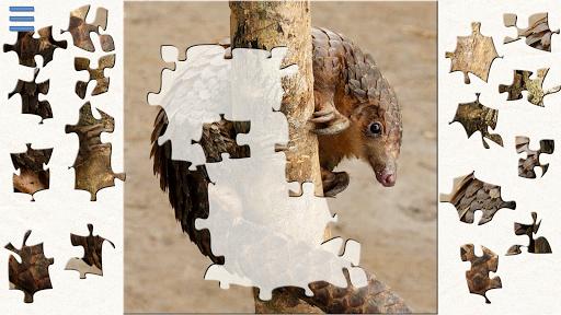 Safari Jigsaw Puzzles Premium