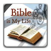 Bible Verse, Bible QT