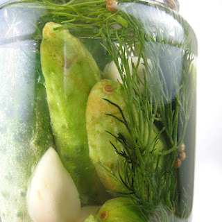 Quick Spicy Dill Pickles (adapted from Food & Wine, August 2009)