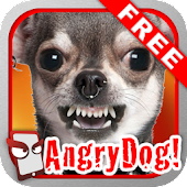 Angry Dog Free for Lollipop - Android 5.0