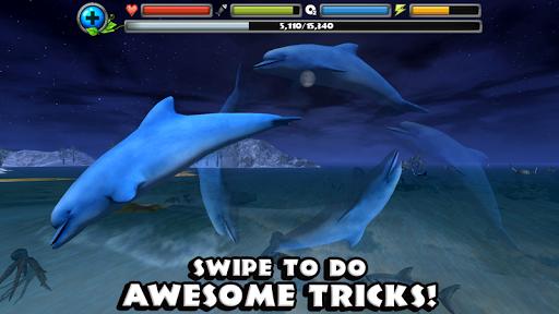 Dolphin Simulator image   13