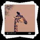 Efeitos Aviary: Visor icon