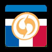Estonian-French Dictionary