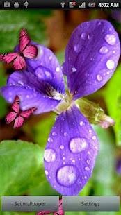 Flower & Colorful Butterflies- screenshot thumbnail