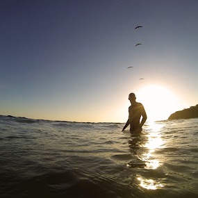 by Erich Schmidt - Landscapes Beaches ( waves, sunset, ocean, beach, birds )