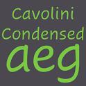 Cavolini Condensed FlipFont icon