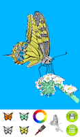 Screenshot of Coloring Book Butterflies