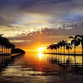 Sunrise Deering Estate by Jean Perrin - Landscapes Sunsets & Sunrises ( palm tree, deering estate, florida sunrise, miami, sunrays, ocean, sunrise, miami sunrise, ocean view, deering estate miami,  )