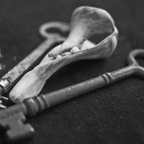 sea keys by Skye Stevens - Black & White Objects & Still Life (  )